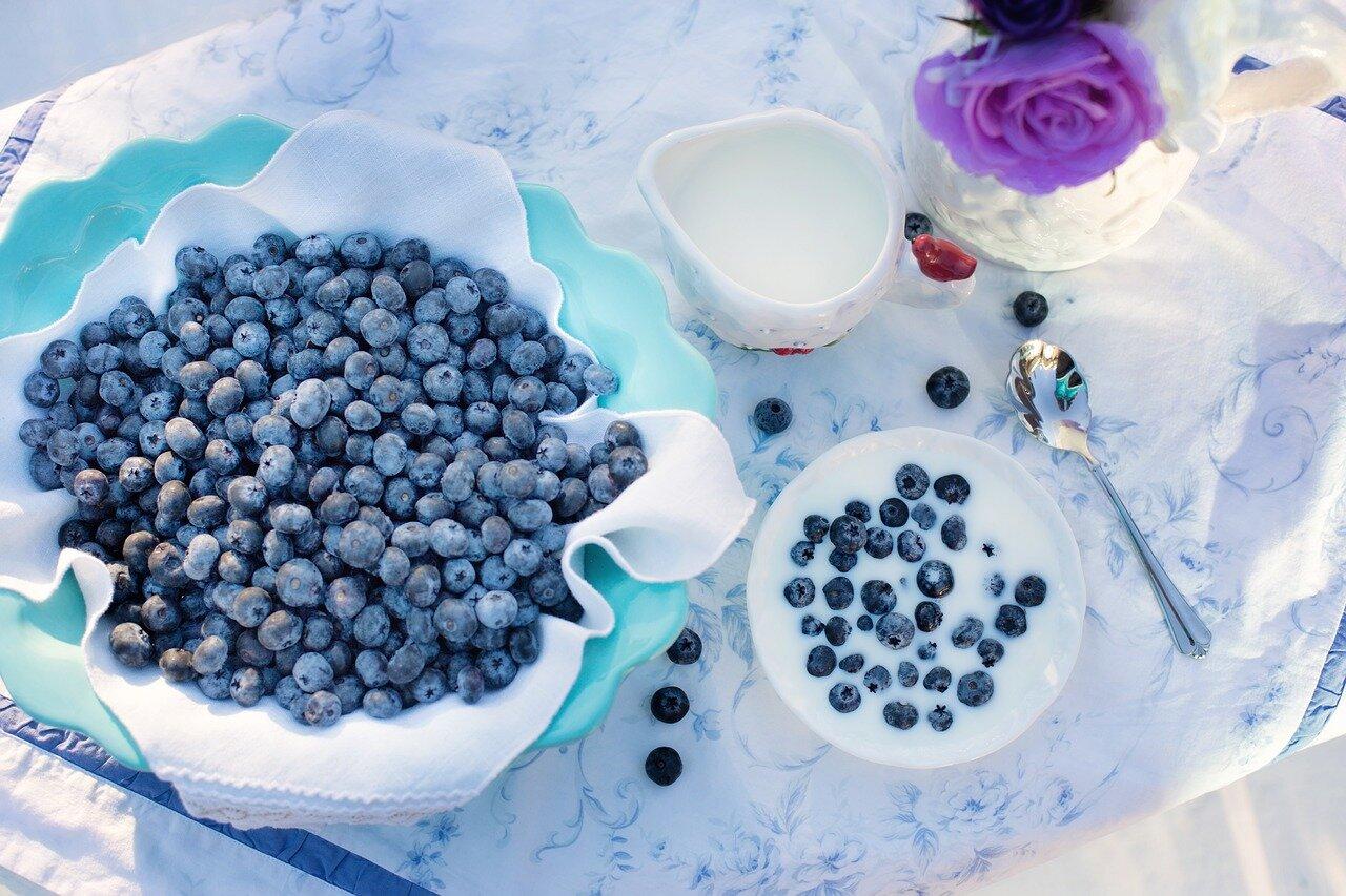 Przestrzeganie diety w czasie dny moczanowej.